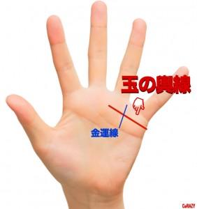 0485922_tamanokosi